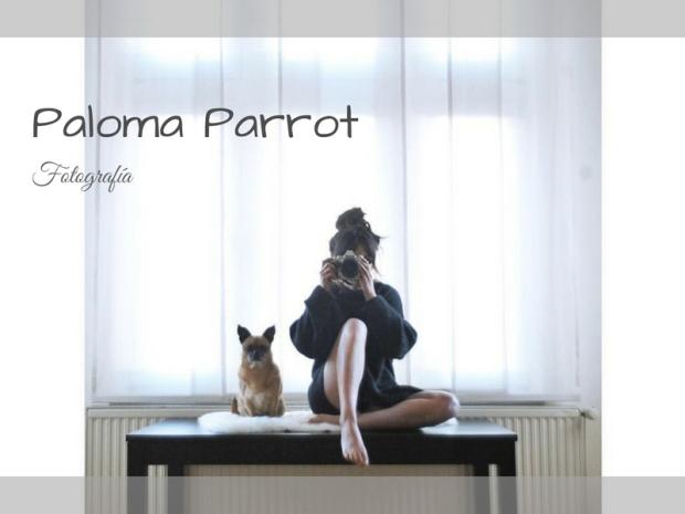 Paloma Parrot
